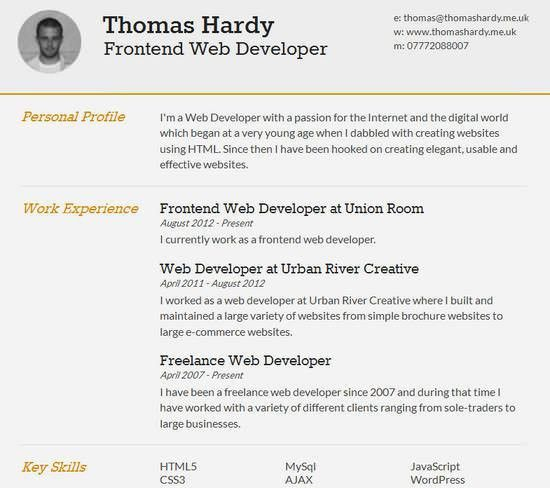 Innovation Successful Resumes 7 Free Resume Templates 30 Modern ...