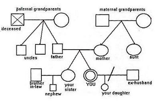 "How to make and use a family ""genogram"" (map)"