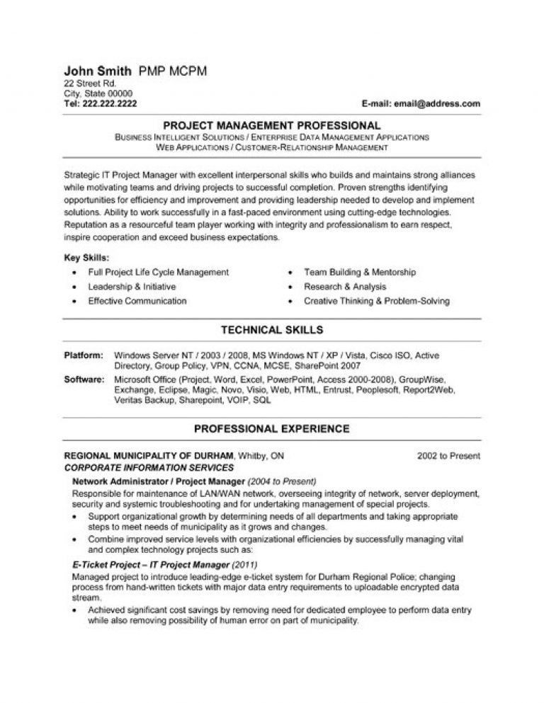 Project Manager Resume Sample Doc - Template Examples