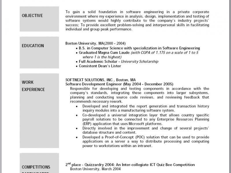 example resume resumes objectives professional gray. entry level ...