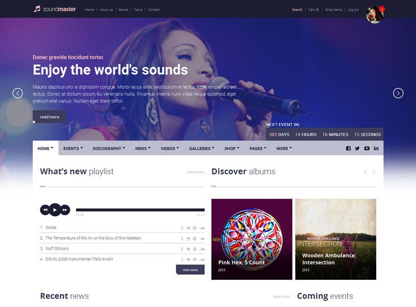 70+ Best Music Website Templates Free & Premium - freshDesignweb
