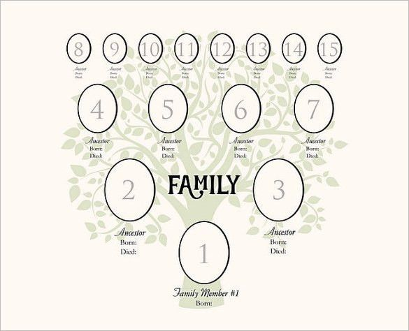 4 Generation Family Tree Template – 12+ Free Sample, Example ...