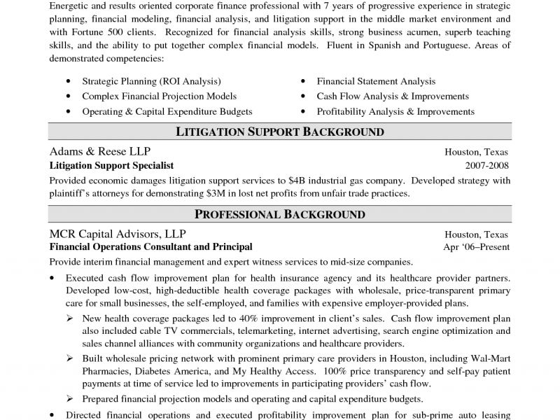 Winsome Design Investment Banking Resume Template 11 Private ...