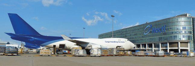 Hactl - Hong Kong Air Cargo Terminals Limited | LinkedIn