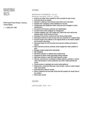 Sample Journalist Resume Reporter Resume Example, Journalist Resume - digital journalist resume