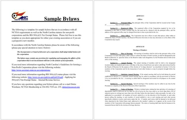 4+ Free Bylaws Templates to Help You Write Bylaws in Best Way Possible