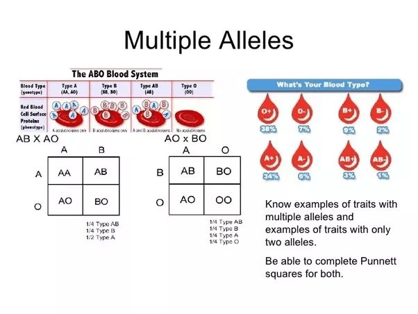 The difference between multiple alleles and...(2017) - Quora