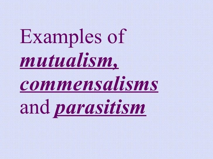 Mutualism Parasitism