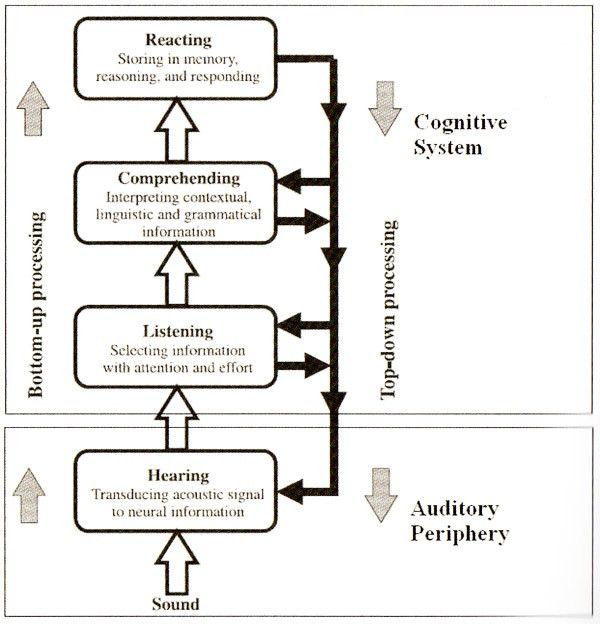 The Influence of Age and Speech Presentation Modality on Listening ...