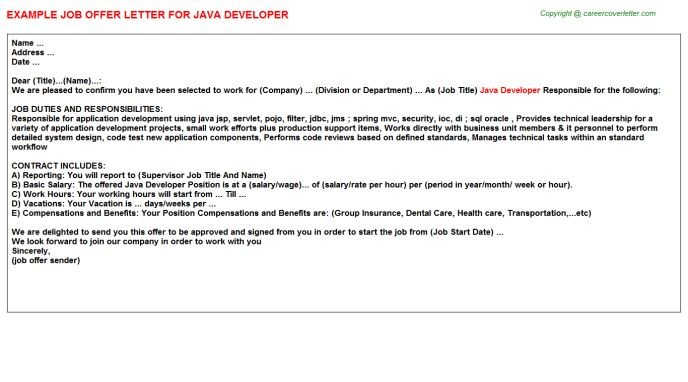 Java Developer Offer Letters