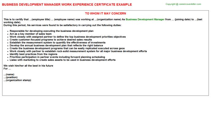 Business Development Manager Work Experience Certificate