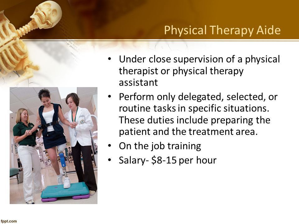 The Skeletal System Support Systems Unit Ppt Download