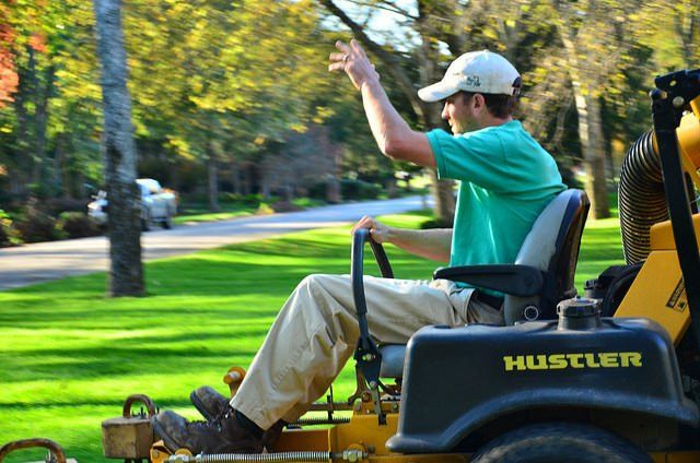 Where can you read reviews about local lawn services?