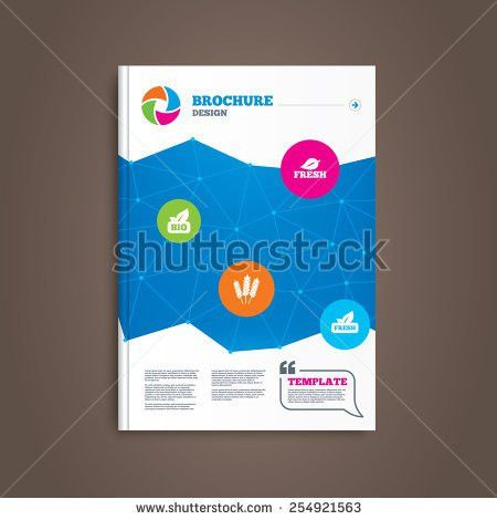 Publisher booklet templates free vector download (12,838 Free ...