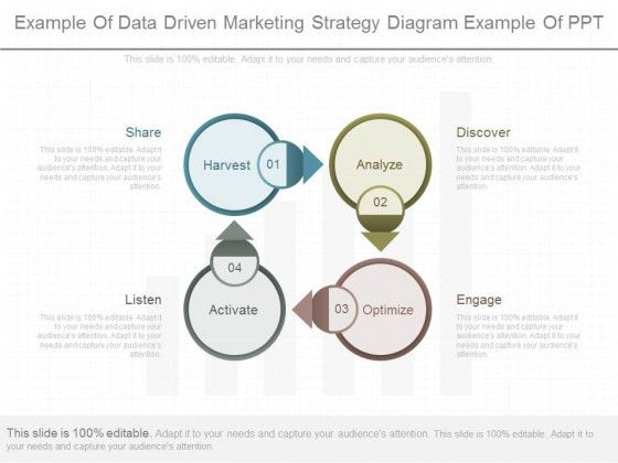 Example Of Data Driven Marketing Strategy Diagram Example Of Ppt ...