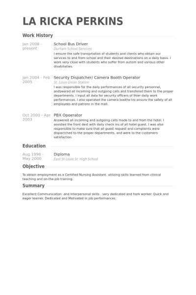 School Bus Driver Resume samples - VisualCV resume samples database