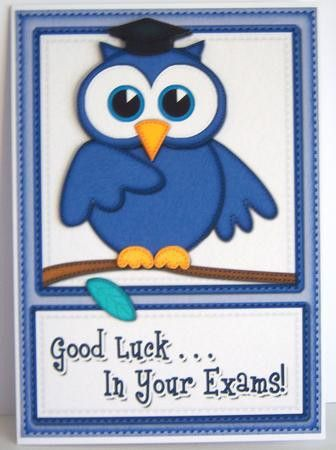 A5 Wise Owl Good Luck Exam Felties Quick Card 3D Decoupage ...