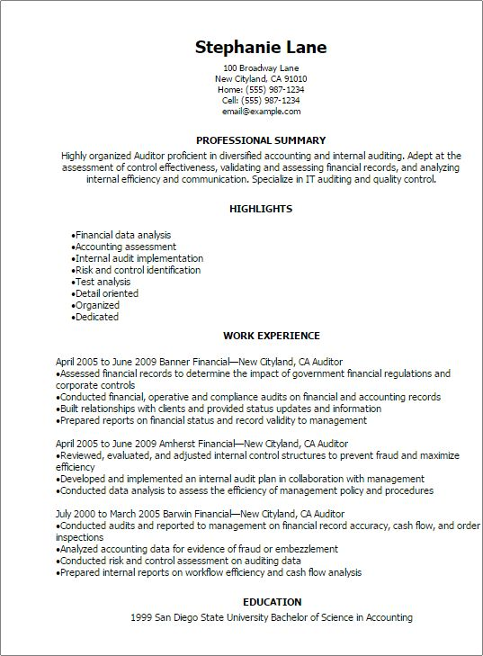 Professional Auditor Resume Templates to Showcase Your Talent ...