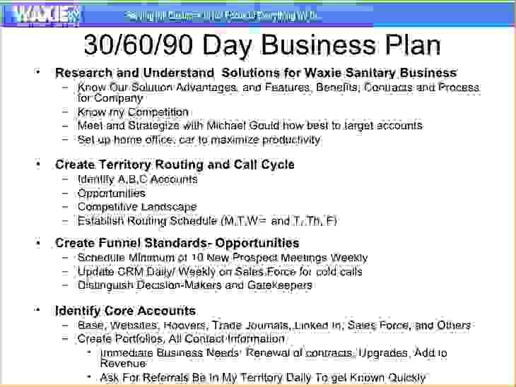 6+ 30 60 90 sales plan templateReport Template Document | report ...