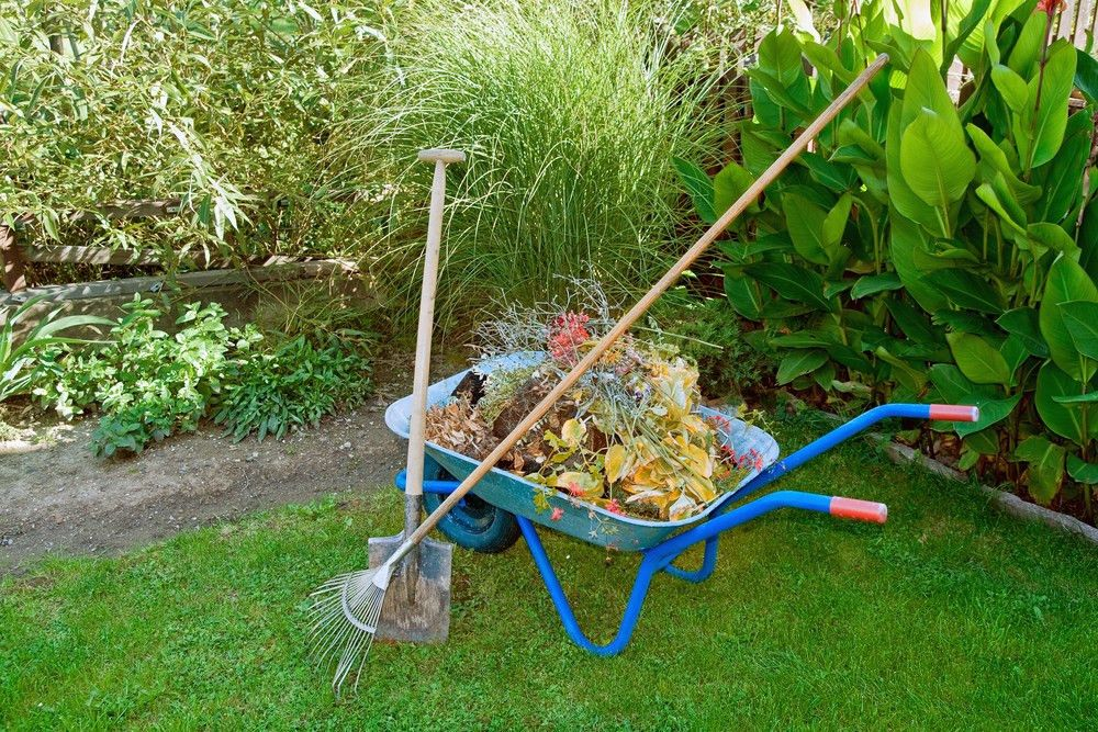 3 Essential Fall Clean-Up Chores To Improve Your Lawn for Spring