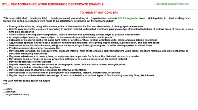 Still Photographer Work Experience Certificate