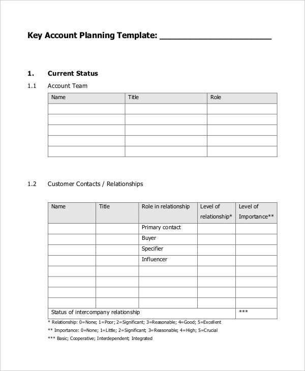 9+ Strategic Account Plan Templates -Free Sample ,Example Format ...