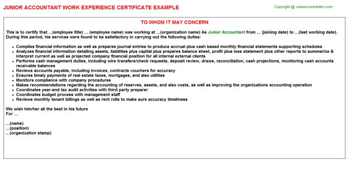 Junior Accountant Work Experience Certificate