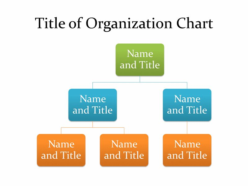 Basic organization chart - Office Templates