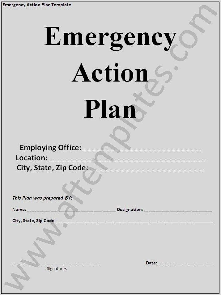 3 Best Action Plan Templates | All Free Word Templates