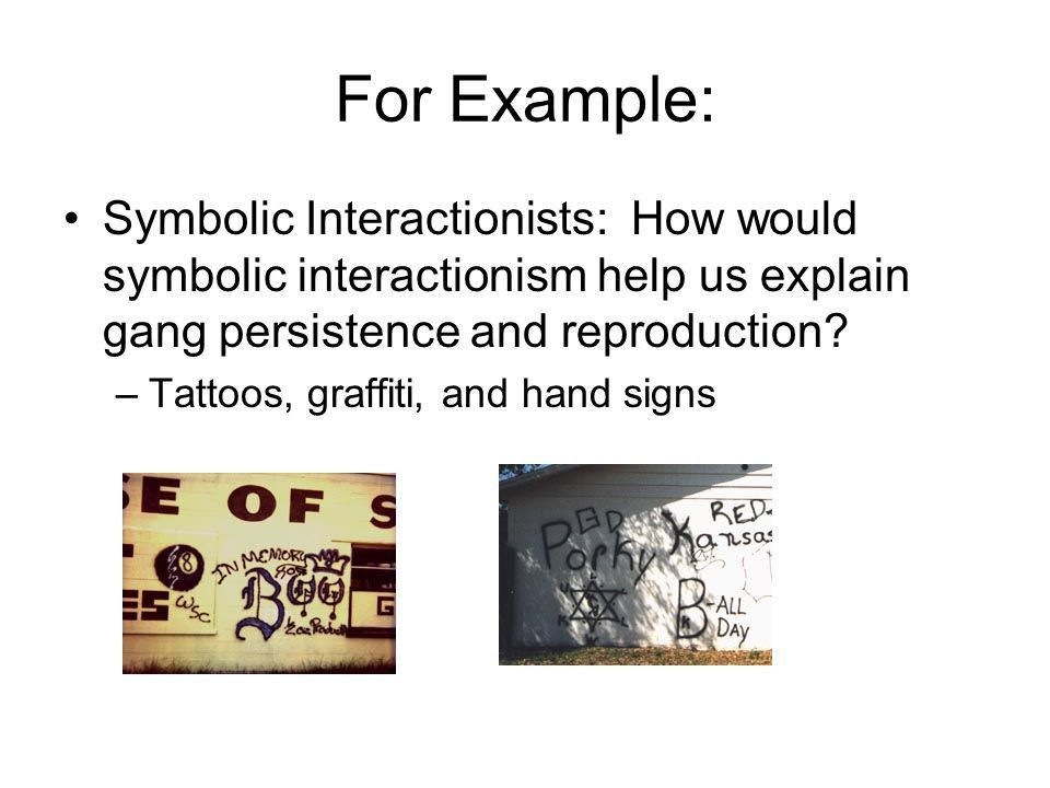 How do we use sociology to study social problems? With… - ppt download