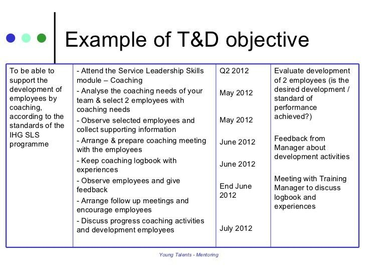 Personal Development Plan & Mentoring