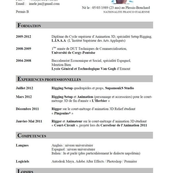 Account Director Resume Samples Visualcv Resume Samples Database ...