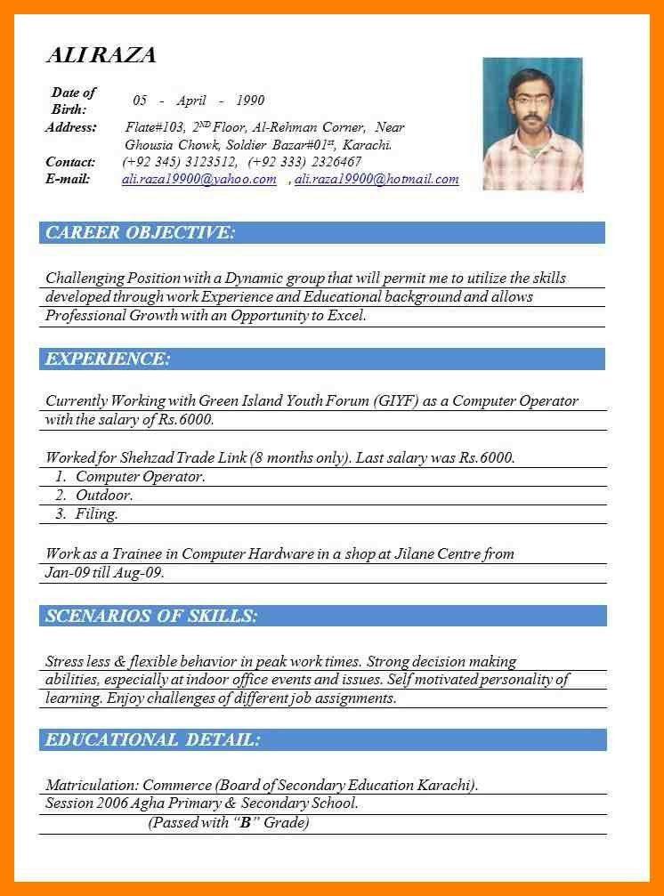 Resume For Computer Operator Pdf - Contegri.com