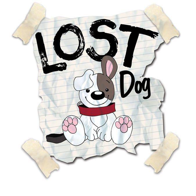 Lost Pet Information