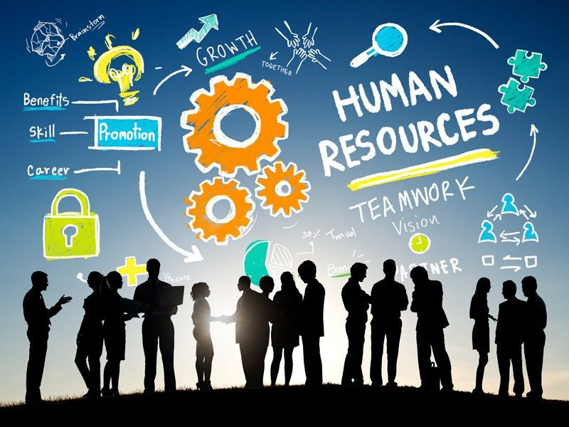 The role and task of Talent Acquisition Specialist