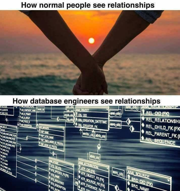How database engineers see relationships - I'm Programmer