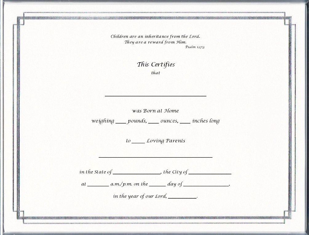Keepsake Home Birth 8.5 x 11 inch Certificate - Silver Border ...