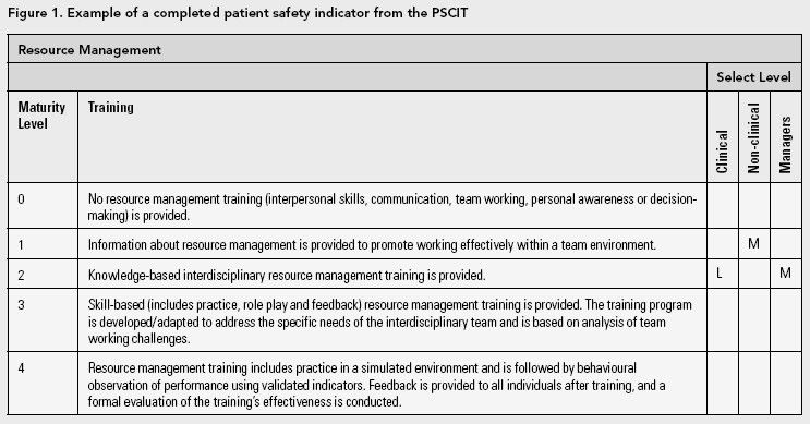 Patient Safety Culture Improvement Tool: Development and ...
