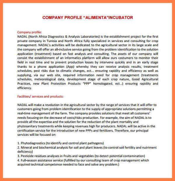 6+ company profile sample pdf   Company Letterhead