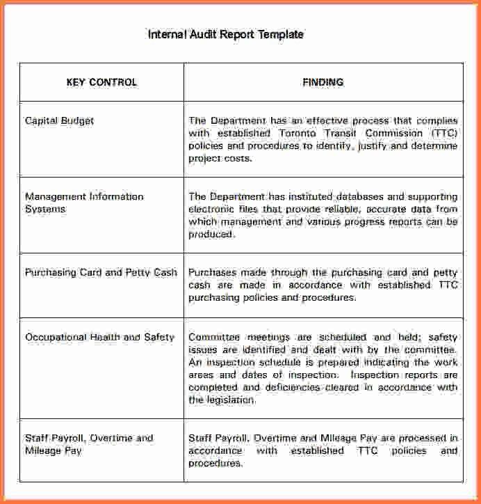 5+ audit report template - Sales Report Template