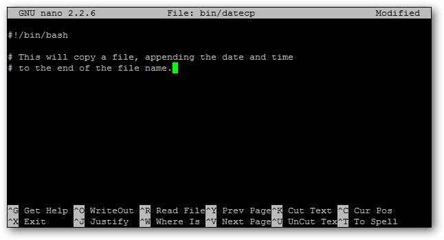 The Beginner's Guide to Shell Scripting: The Basics