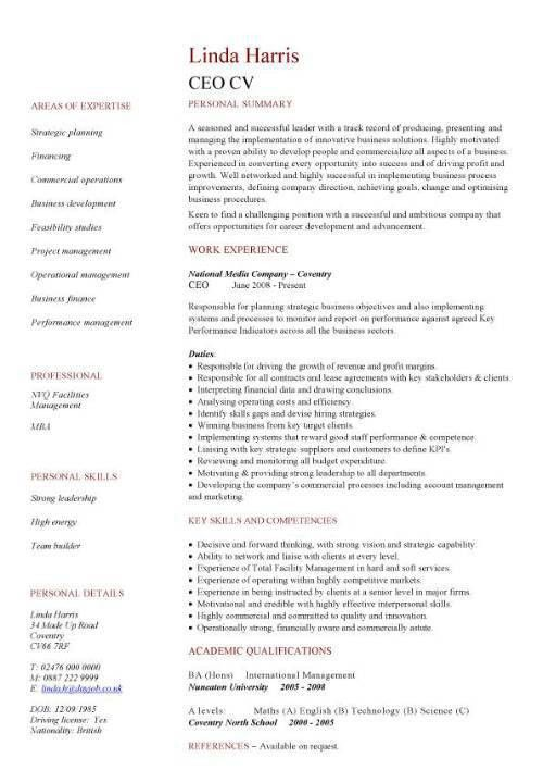 CEO CV sample, Setting strategy and vision, Policy making,