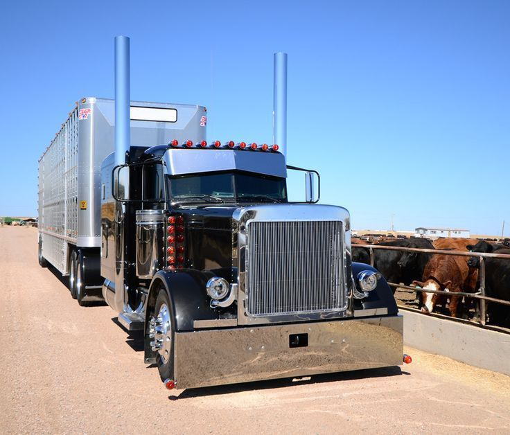 61 best cow wagons images on Pinterest | Cattle, Semi trucks and ...