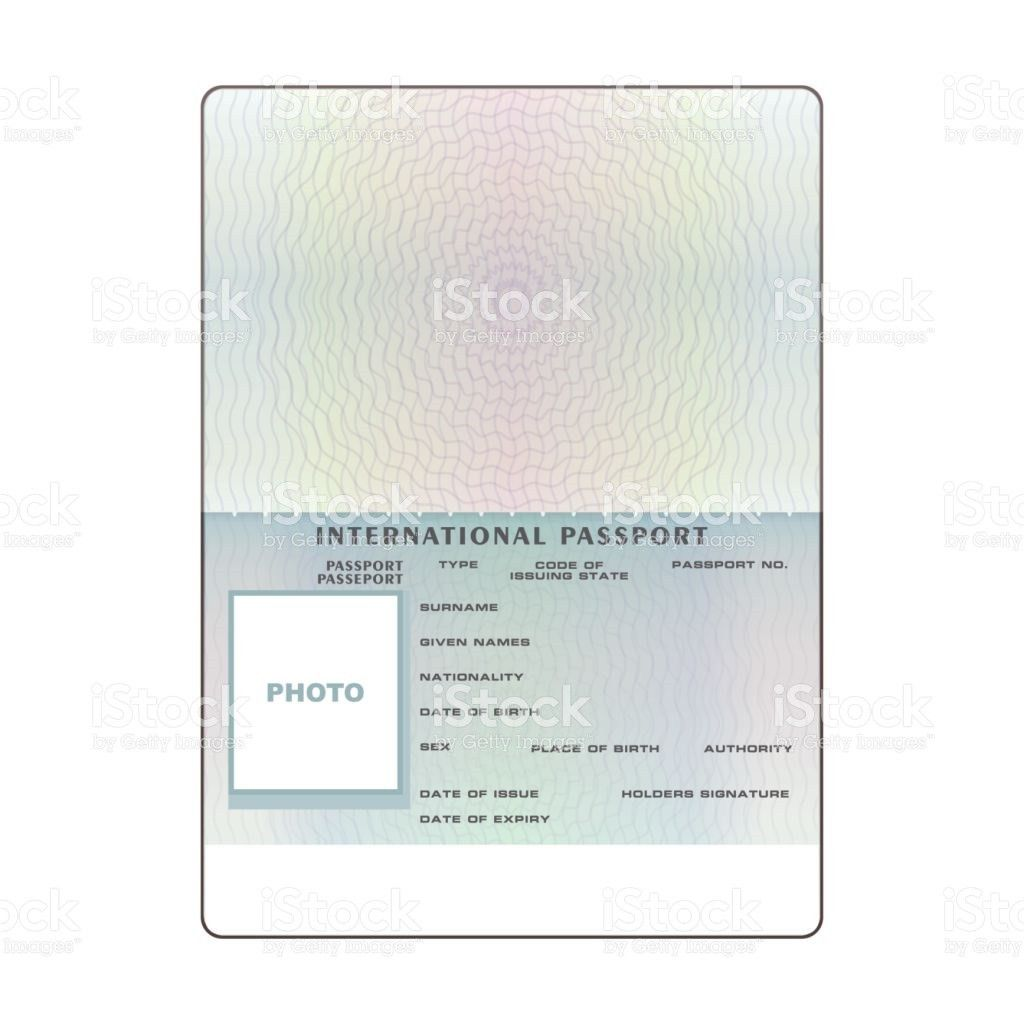 Vector International Open Passport Blank Template stock vector art ...