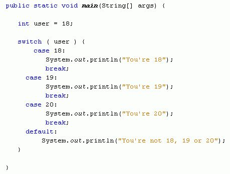 Java For Complete Beginners - switch statements