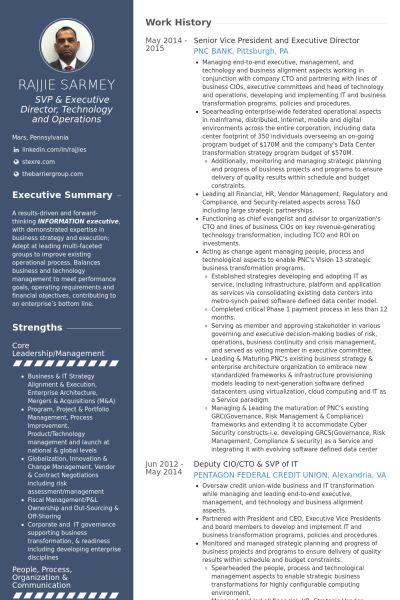 Senior Vice President Resume samples - VisualCV resume samples ...