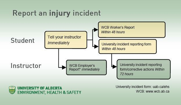 Report an Incident - Environment Health Safety