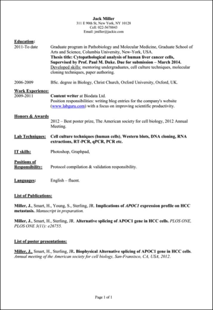 Fascinating What To Put On A Resume 11 What To Put On A Resume For ...