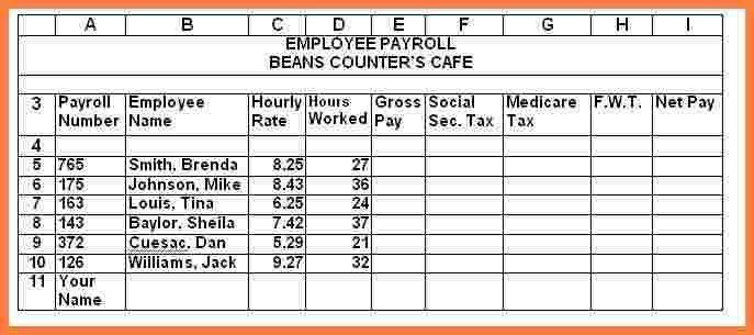 6+ payroll sheet samples | Securitas Paystub