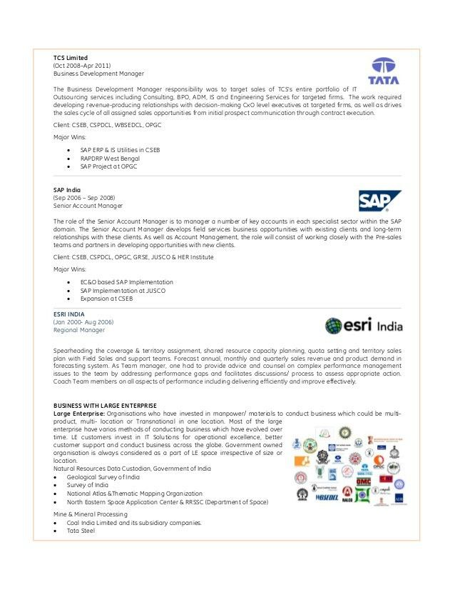 pre sales consultant resume pre sales consultant resume sample